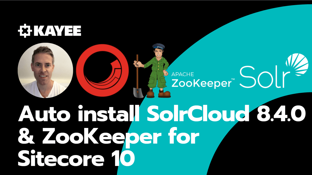 Auto install SolrCloud 8.4.0 & ZooKeeper for Sitecore 10